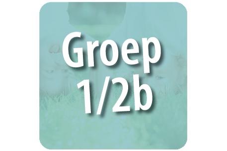 Groep 1/2b