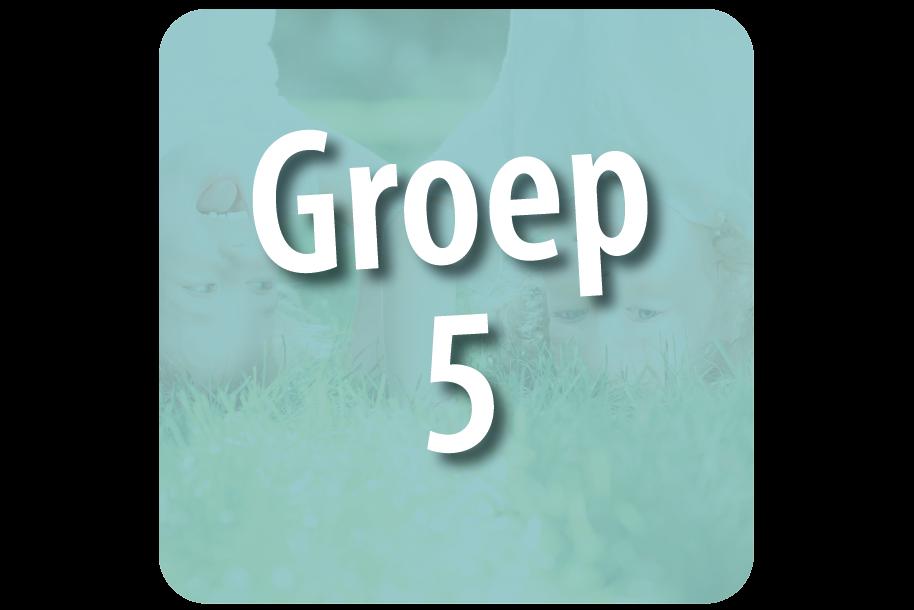 Groep 5-6